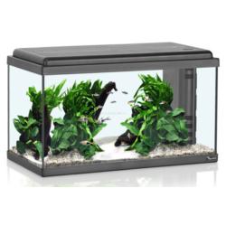 Aquatlantis Advance 60 LED akvárium szett