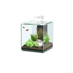 Aquatlantis Nano Cubic 40 akvárium szett