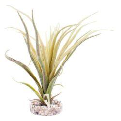 Sydeco Tillandsia Fan műnövény 22 cm