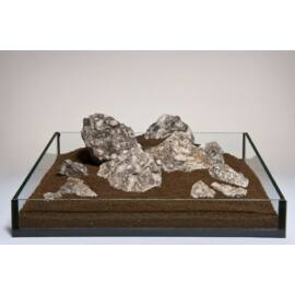Black Snail kő