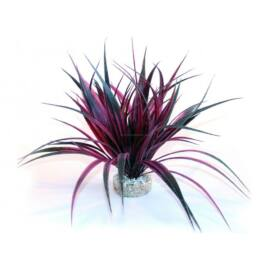 Sydeco Amazonia műnövény 22 cm