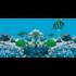 Juwel High-Lite Blue T5 fénycső